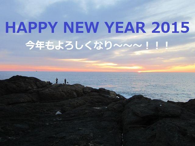 2015-01-01 003